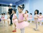唐舞士明星学院舞蹈 美术 小主持等专业培训