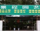 宁波景程园艺 专业绿植租赁,花卉租赁,绿化养护