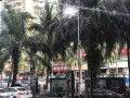 世贸雅苑200平 做什么都可以 人留量大门口公交站