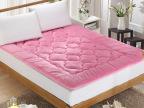 超柔海藻绒床笠式床垫加厚床褥单双人榻榻米保暖褥子批发