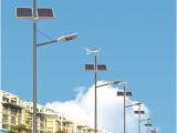 厂家优质生产,太阳能路灯,风光互补路灯,可来图加工