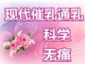 350/次,湛江霞山上门催乳通乳,专业催乳师持证上岗