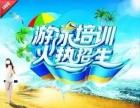 2017温州市游泳培训火热报名啦 精品私教课程