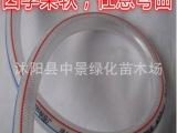 4分/6分/1寸食品级无毒无味塑料水管 PVC蛇皮管软管防爆防晒