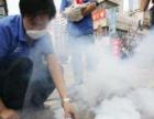 北京杀蟑螂、灭老鼠、灭红白蚂蚁、臭虫、跳蚤服务全城