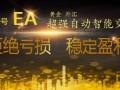 实力稳定EA代挂智能交易系统代挂月收益10%~20%