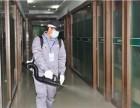 深圳各区专业灭老鼠杀蟑螂除四害除臭虫白蚁防治 杀虫公司