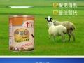 江门哪里有卖狗狗羊奶粉接近母乳补充幼犬营养