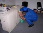 重庆专业灭鼠公司 宿舍灭鼠除虫 灭蟑螂除蚁 收费公道