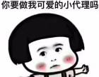 450元招楷妈代理