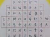 武昌南湖花园专业书法培训