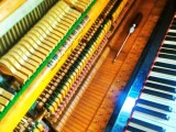 南京栖霞区钢琴调律调音服务