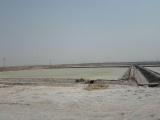 黄骅厂家直销工业盐,黄骅大粒盐海盐生产厂