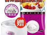 购家家乐酸奶发酵剂益生菌 七株优活酸奶菌粉送正品 酸奶机