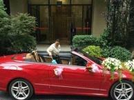 奥迪、奔驰敞篷跑车出租、专业个性婚车8辆租赁