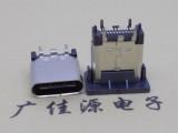 TTPE- C 夹板母座直插式 L 9.5/10.5尺寸
