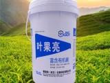 厂家供应叶果亮液体肥 果树水溶肥 膨果增产