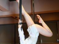 金牛区星秀舞蹈0首付分期学舞蹈 钢管舞专业培训学校