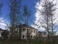 上谷水郡双拼别墅,精装修, 面积220平米总价565万
