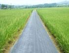 厂家生产园艺防草地布 除草布 遮光布 防杂布 黑色防草布批发