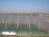 天合塑业优良的PO大棚膜供应商 加工PO棚膜