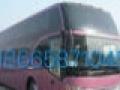 (车主)惠州大亚湾 - 河南各地专线大巴