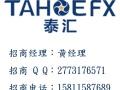 高杠杆外汇平台,安全稳定 TahoeFX泰汇外汇招商总部