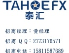 TahoeFX泰汇外汇 现招外汇代理商,IB代理 个人代理