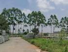 转让横县六景高速路口附近84亩工业用地4500万