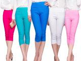 夏季女士七分裤 弹力铅笔裤糖果色修身打底裤 高腰女裤 厂家批发