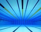 惠州惠阳淡水市政府广场附近,专业少儿成人游泳培训