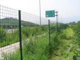 安平丝网厂家供应养殖围栏铁丝网 养鸡围网 浸塑圈地荷兰网
