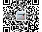广州拼多多果园系统商城模式开发