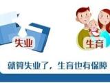 北京社保代繳 補充醫療 個人社保信息變更 搖號個稅代理