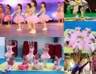 大兴黄村康乃馨奥通之星国际儿童培训学校民族舞