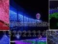 灯光展览出租出售灯光展览制作梦幻灯光节展览出租厂家