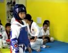 水岸国际那里学跆拳道,就来正韩跆拳道学