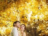 龙摄影2018跨年狂欢-大嫁光临邀请函