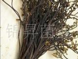 大量批发   蕨菜干 龙爪菜 价廉物美