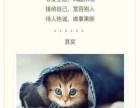 猫说心智网络教育,