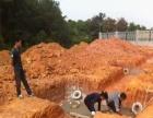 福鼎电焊钢结构工程队