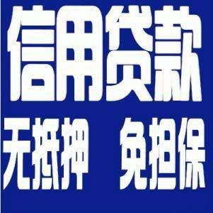 武昌无抵押信用贷款 正规靠谱贷款 利息低
