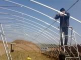 北京温室大棚厂家北京蔬菜大棚价格北京蔬菜大棚搭建