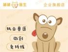 杭州本地周边猫狗微创绝育手术