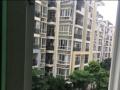 聚龙城单身公寓 售价13万