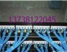 办公室网络弱电综合布线接水晶头路由器安装 网络布线