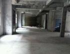 金桂路 仓库 420平米