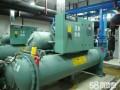 湛江雷州专业发电机回收公司