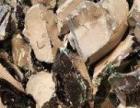 厂家高价常年回收:碎玻璃渣:碎玻璃瓶