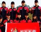 南京专业灭白蚁灭老鼠除四害服务消杀公司除虫公司